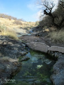 Cottonwood Spring