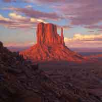"""""""The Mittens"""" by Curt Walters"""
