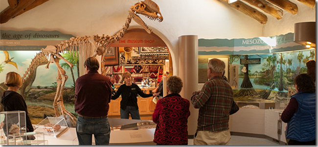 Group Museum Tour