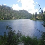 Chevelon Lake, Mogollon Rim,