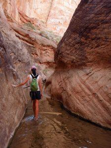 Hiking Escalante