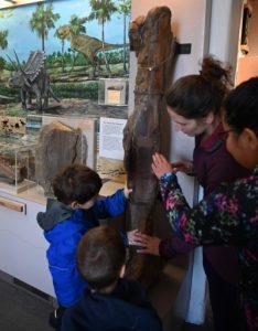 Kids touching a bone