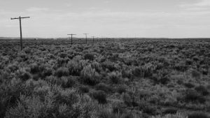 telephone poles in shrub brush landscape